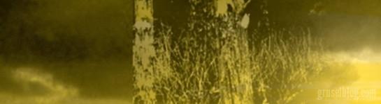 """Stephen King """"Der dunkle Turm (II) – Drei"""" (1987), CropTop"""