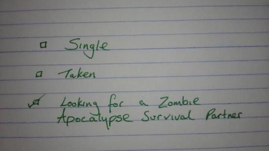 Zombie Apocalypse, (c) 2014 www.kotzendes-einhorn.de
