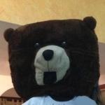 Creepypasta, 1999 Mr. Bear, (c) http://creepypasta.wikia.com