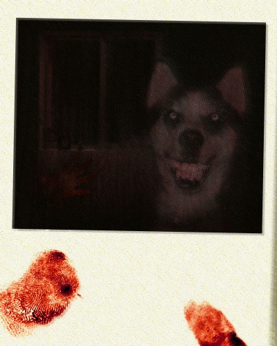 Creepypasta, Smile Dog, (c) http://creepypasta.wikia.com