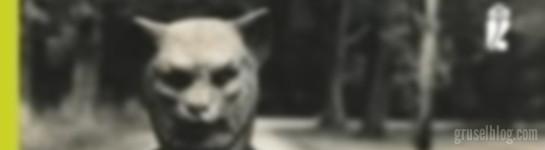 """Stephen King """"Im Morgengrauen"""" (1985), aus: """"Blut"""", CropTop"""